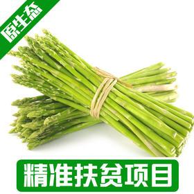 【后营村】  农家自种露天种植绿芦笋2斤包邮