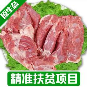 【新庙村】新鲜羊肉整只包邮
