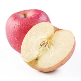 新鲜红富士苹果4颗装