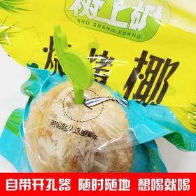 泰国进口烧烤椰子4个装新鲜水果泰国椰青椰皇树上矿包邮