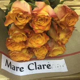 【菲集】埃塞俄比亚农场直供 玫瑰花 Mare Clare 进口鲜花 鲜切花