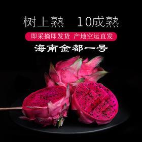 【特价】海南金都一号火龙果   香甜多汁 肉厚皮薄  含丰富花青素 产地空运