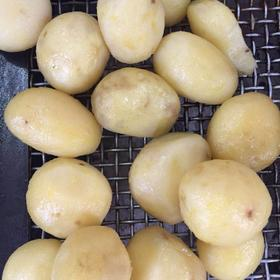 土豆1公斤