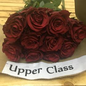 【菲集】埃塞俄比亚农场直供 玫瑰花 Upper Class 进口鲜花 鲜切花