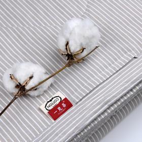 【一见喜】夏日睡棉新宠 100%纯棉表层+100%新疆棉内芯,双人、单人夏凉被