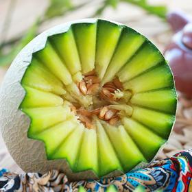 烟台海阳网纹瓜 瓜中贵族 现摘现发蜜瓜 超级甜蜜 约4.5斤包邮