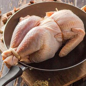 苏北散养老母鸡950g/只 农场直供冷冻禽肉