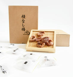 【古法腌制梅子 出口日本】 无核日式梅饼125g  咸带甜休闲食品开袋即食