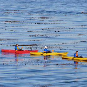 玩皮划艇、游乐园、吃农家饭…… 嗨翻你的周末,走起!
