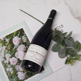 【闪购】乔丹庄园夏莎妮蒙哈榭老藤干红葡萄酒2015/Domaine Vincent Girardin Chassagne Montrachet Rouge VV 2015