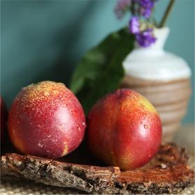 大凉山油桃 当季红皮黄心油桃清甜爽脆 5斤 京东包邮 新鲜直达
