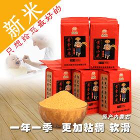 黄鑫轩黄金小米2.5千克