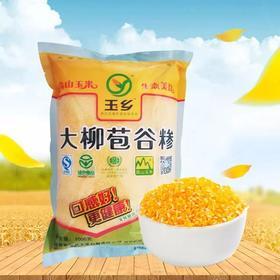 【产地直达】大柳苞谷糁非转基因玉米 1000g/袋 ×1袋丨