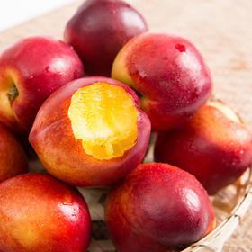 【有赞拼团】湖北四井岗油桃新鲜孕妇水果 原生态零污染 新鲜美味