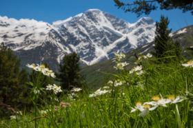 厄尔布鲁士登山活动招募