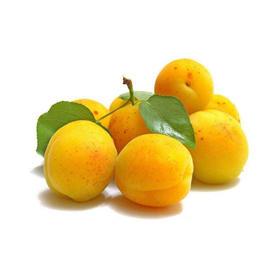 新疆托克逊小白杏礼盒4斤