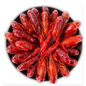 【龙虾大促】【特色小龙虾】活虾现烧 精选作料 精心烹制 传统古法 美味劲爆 玩弄你的味蕾