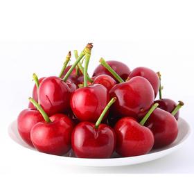 山东潍坊  红灯樱桃 3斤装 果园直发  坏果包赔(送山东潍坊特色风筝 数量有限 先到先得)