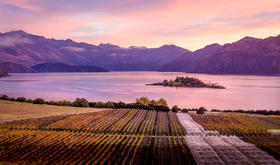 【北京】5月31日 Best New Zealand醉美新西兰顶级名家品鉴会