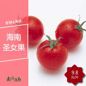 【拍前请看温馨提示】海南陵水千禧圣女果(1.5斤起购)