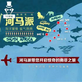南非十日游 带你潜水寻沙丁鱼群