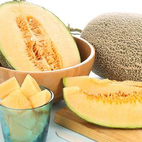 【趣玩生活】新疆哈密瓜西州蜜25号2个6斤装 香甜网纹瓜