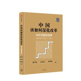 中国该如何深化改革 IMF的国际视角 林卫基 著