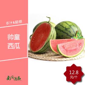 帅童西瓜 (两个起售,每个约2斤)【拍前请看温馨提示】