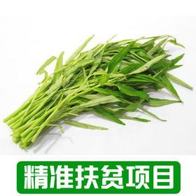 【新庙村】农家空心菜1Kg