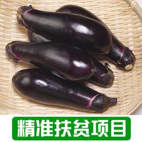【雅谷山】农家茄子1Kg