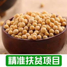【新庙村】农家干黄豆1Kg