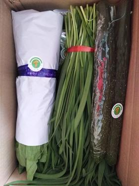 【济西农场】箱装菜 8种时令蔬菜8斤装 年卡每周四配送一次