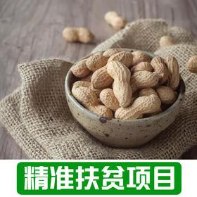 【新庙村】农家干花生2.5Kg带壳