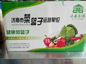 【济西农场】绿色养生会员箱装套餐 单箱  10个品种