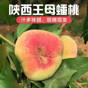2020陕西蟠桃新鲜桃子水蜜桃水果清甜蟠桃现摘现发5斤装