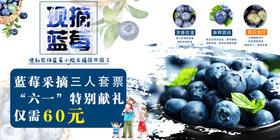 【六一特惠】 原价200元的蓝莓小院采摘劵(两大一小)现仅需60元,立省140元