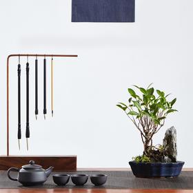 绿居植物榕树小石山精致盆景室内绿植盆栽绿色办公室家居花卉植物
