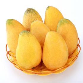 海南小台农芒果新鲜水果芒果5斤小台芒鸡蛋芒台农芒