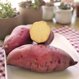 [栗瓤红薯  下单后1-3天内发货]日本品种 栗面粉糯 5斤装