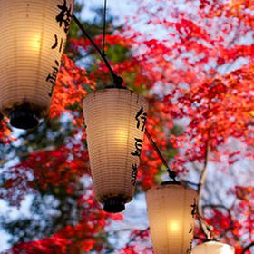 【醉美日本】名古屋+奈良 +大阪红叶温泉之旅