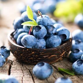 【蓝小鲜 湖南怀化 蓝莓鲜果】125克/盒*6盒 源自五溪 佳果天成