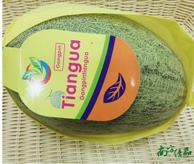 海南青花蜜瓜 一个约4斤【拍前请看温馨提示】