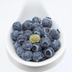 现摘现发 新鲜蓝莓  无公害孕妇新鲜水果  4盒顺丰包邮