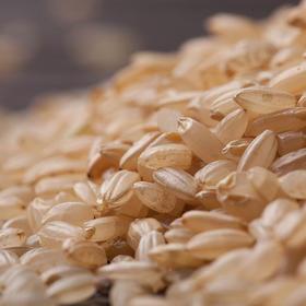 云清牌发芽糙米(1000g*3) 营养活力米 稻米升级产品 包装随时升级以到货包装为准