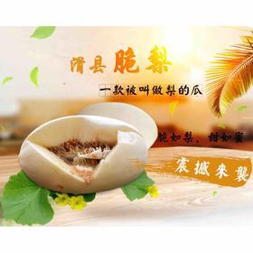 【现摘现发】滑县脆梨甜瓜 一款被叫做梨的瓜 脆如梨 甜如蜜 孕妇新鲜水果 5斤装(2-3个果)全国包邮