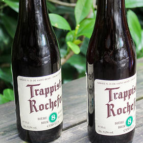 罗斯福Rochefort8号330ml*6支(世界杯特惠)