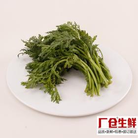 茼蒿 新鲜蔬菜火锅涮菜板式烧烤食材 精选150克-835407