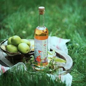 【江南米酒】手工冬酿2瓶 低度鲜酿米酒 6°清甜甘爽 500ML*2 自饮送礼 设计师匠人和非遗传承人的匠心之作