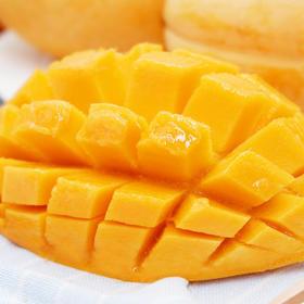 进口缅甸香芒 大口啃的芒果才过瘾 芒味香浓 细腻香甜 8斤装