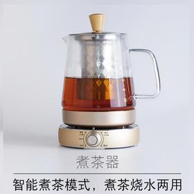 煮茶器黑茶白茶普洱玻璃电热水壶养生壶 全自动保温煮茶壶
